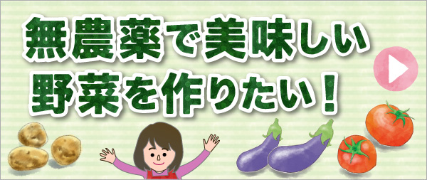 無農薬で美味しい野菜を作りたい!