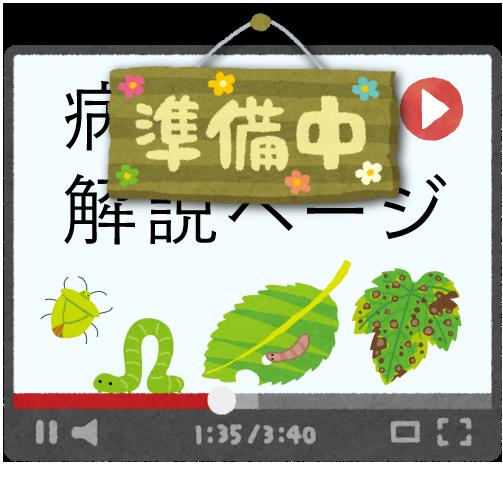病害虫解説ビデオ