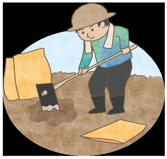 有機土壌を作り、有機土壌を維持し続ける